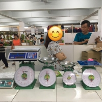 Timbangan Per atau timbangan pegas merek Hanoi